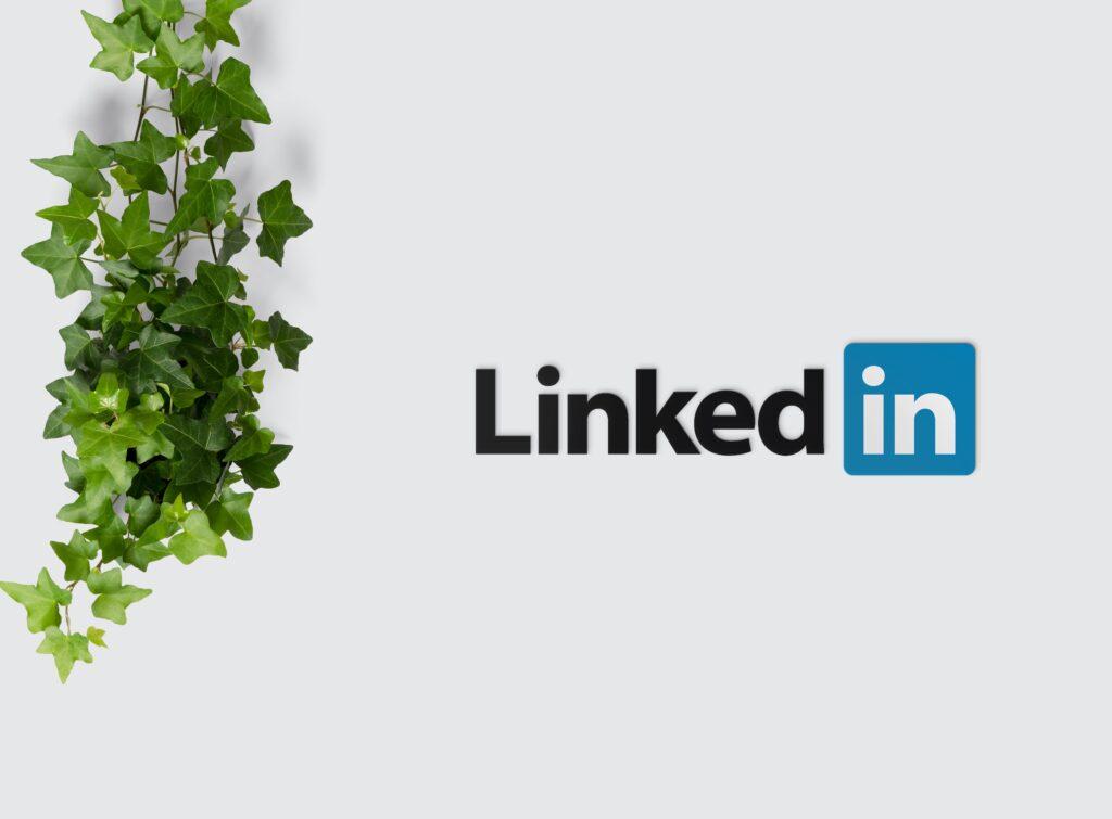 Sube de nivel con LinkedIn Live